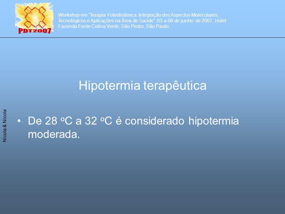Workshop em Terapia Fotodinâmica: Integração dos Aspectos Moleculares, Tecnológicos e Aplicações na Área de Saúde, 03 a 06 de junho de 2007, Hotel Fazenda Fonte Colina Verde, São Pedro, São Paulo.