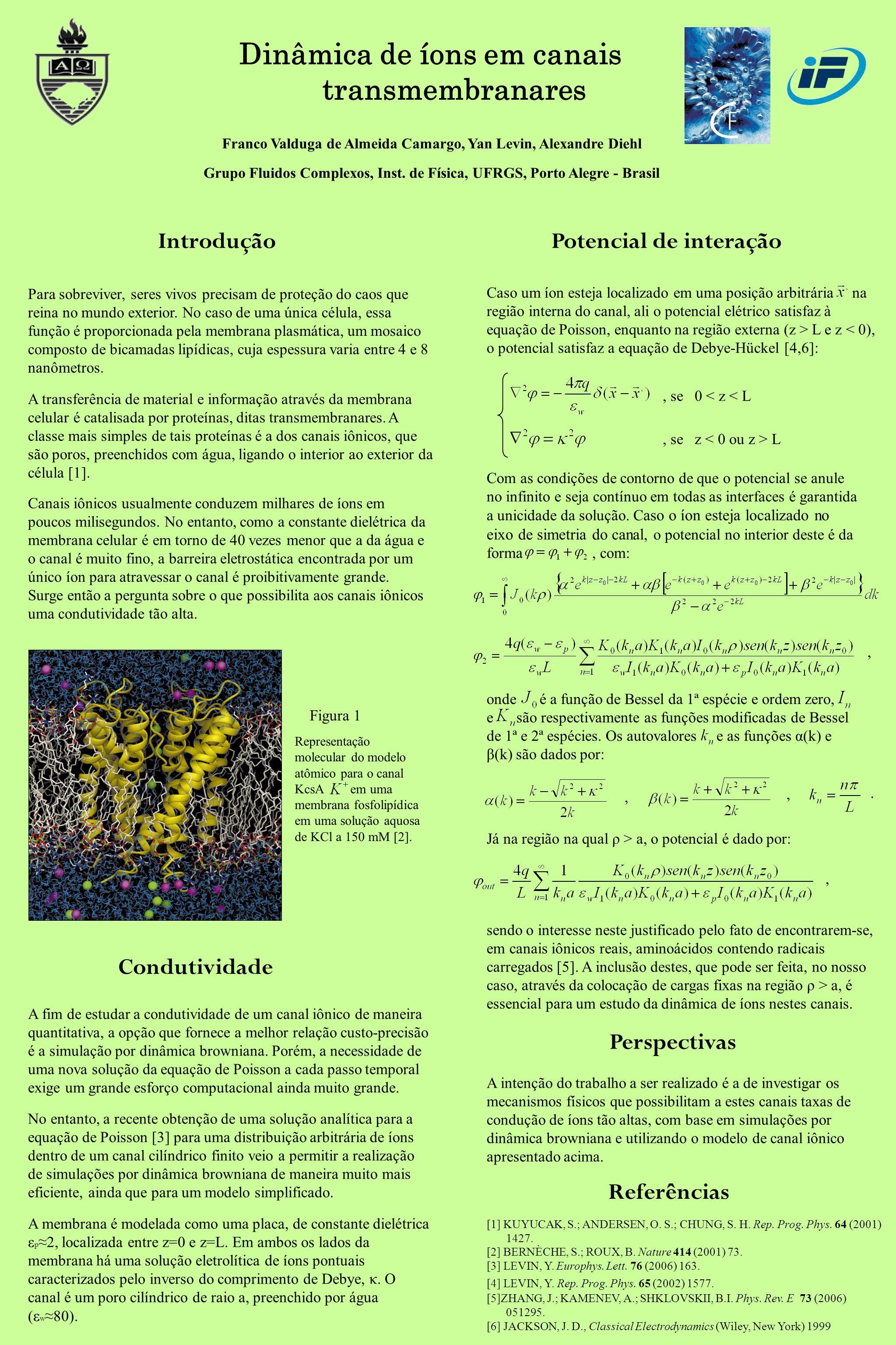 Dinâmica de íons em canais transmembranares Franco Valduga de Almeida Camargo, Yan Levin, Alexandre Diehl Grupo Fluidos Complexos, Inst. de Física, UF