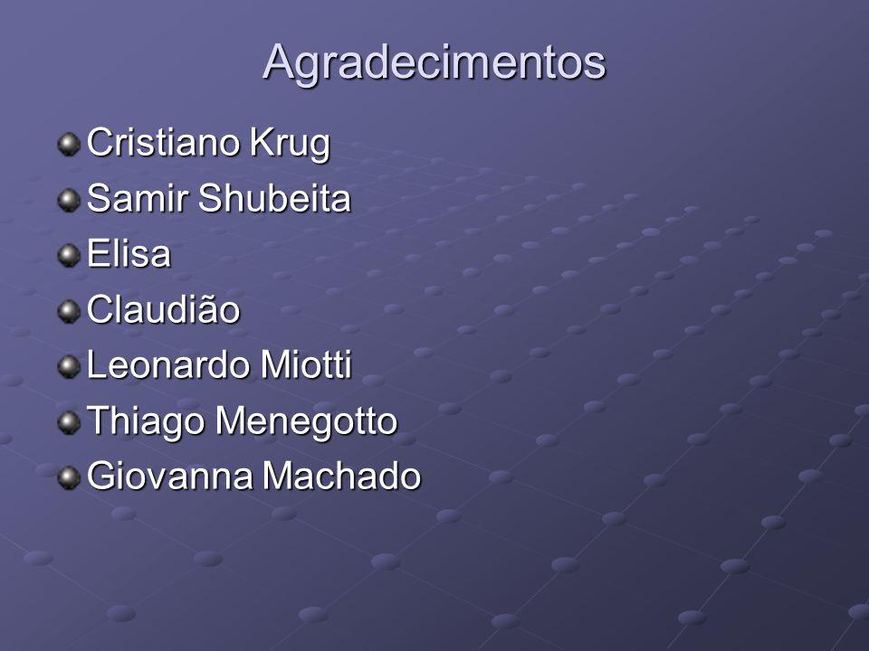 Agradecimentos Cristiano Krug Samir Shubeita ElisaClaudião Leonardo Miotti Thiago Menegotto Giovanna Machado