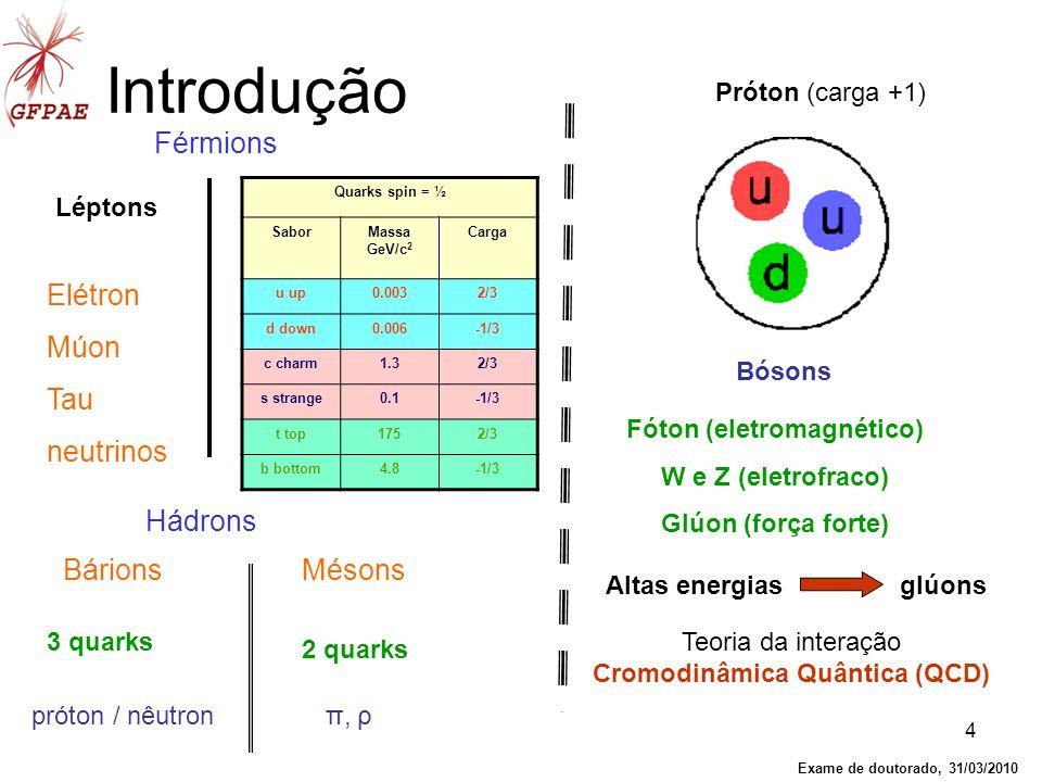 4 Introdução Mésons Bárions Hádrons Elétron Múon Tau neutrinos Férmions Léptons 3 quarks 2 quarks próton / nêutron π, ρ Próton (carga +1) Teoria da in