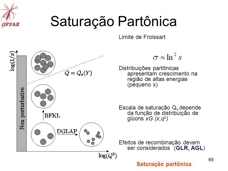 65 Saturação Partônica Limite de Froissart Distribuições partônicas apresentam crescimento na região de altas energias (pequeno x) Escala de saturação