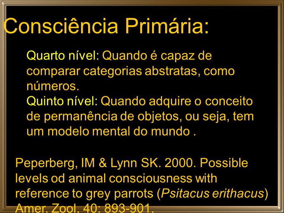 Consciência Primária: Quarto nível: Quando é capaz de comparar categorias abstratas, como números. Quinto nível: Quando adquire o conceito de permanên
