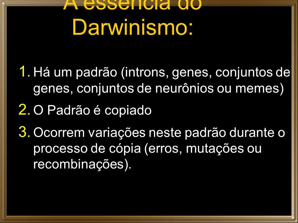 A essência do Darwinismo: 1. Há um padrão (introns, genes, conjuntos de genes, conjuntos de neurônios ou memes) 2. O Padrão é copiado 3. Ocorrem varia