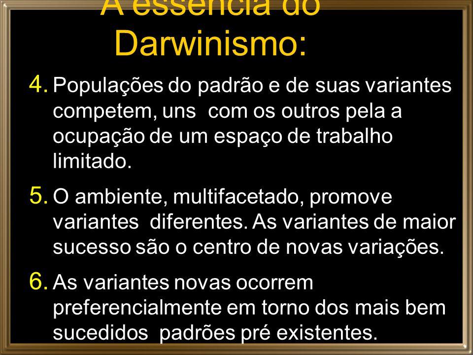 A essência do Darwinismo: 4. Populações do padrão e de suas variantes competem, uns com os outros pela a ocupação de um espaço de trabalho limitado. 5