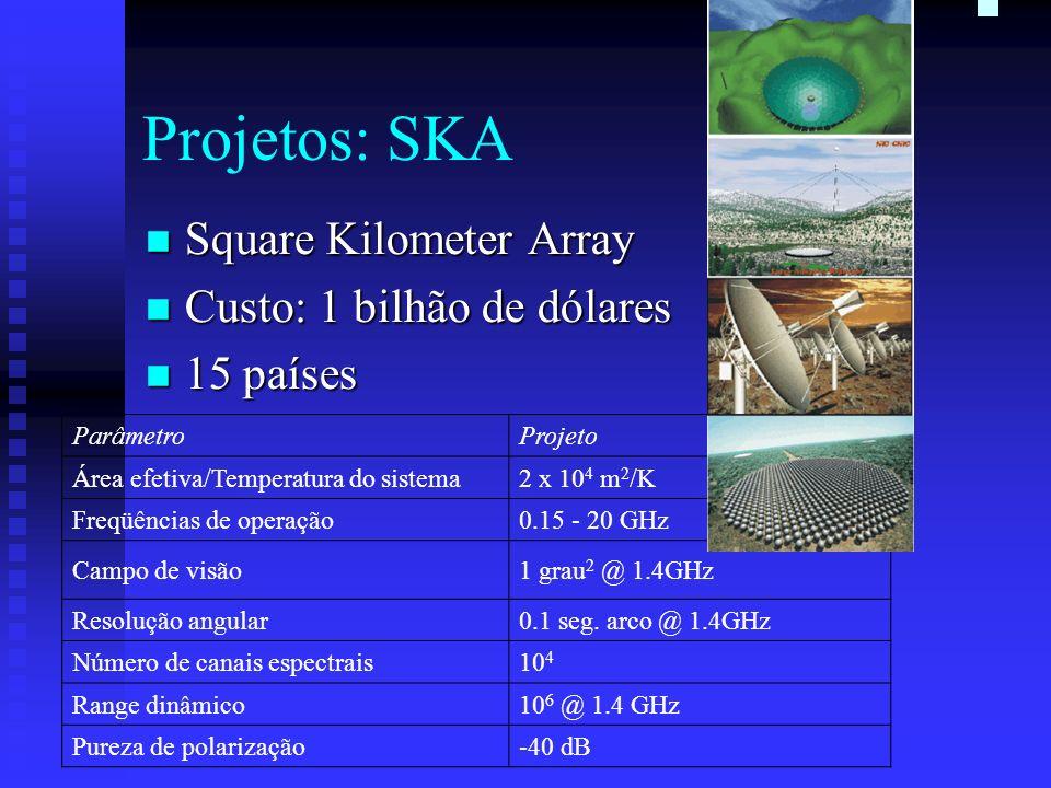 Projetos: SKA Square Kilometer Array Square Kilometer Array Custo: 1 bilhão de dólares Custo: 1 bilhão de dólares 15 países 15 países ParâmetroProjeto