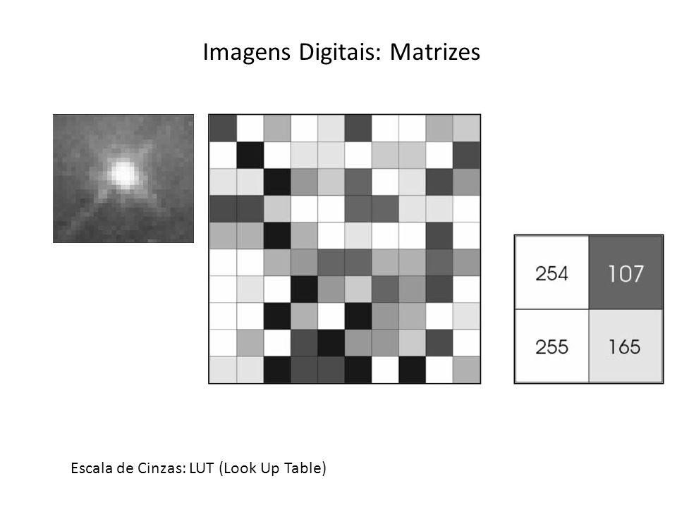 Imagens Digitais: Matrizes Escala de Cinzas: LUT (Look Up Table)