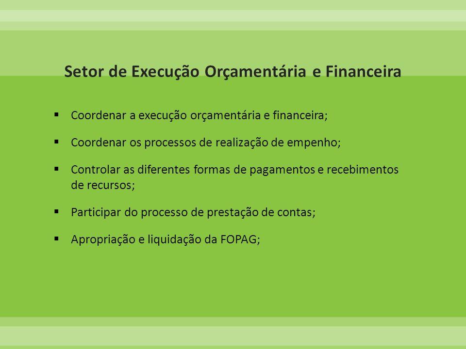 Coordenar a execução orçamentária e financeira; Coordenar os processos de realização de empenho; Controlar as diferentes formas de pagamentos e recebi
