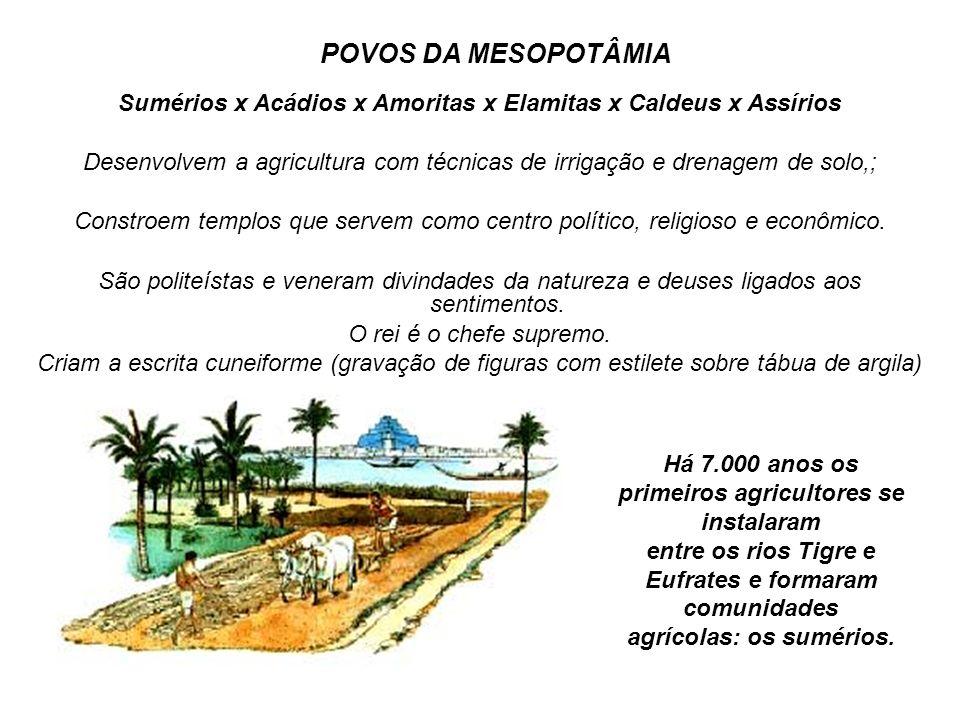 POVOS DA MESOPOTÂMIA Sumérios x Acádios x Amoritas x Elamitas x Caldeus x Assírios Desenvolvem a agricultura com técnicas de irrigação e drenagem de s