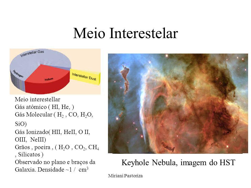Miriani Pastoriza Meio Interestelar Meio interestellar Gás atômico ( HI, He, ) Gás Molecular ( H 2, CO, H 2 O, SiO) Gás Ionizado( HII, HeII, O II, OII