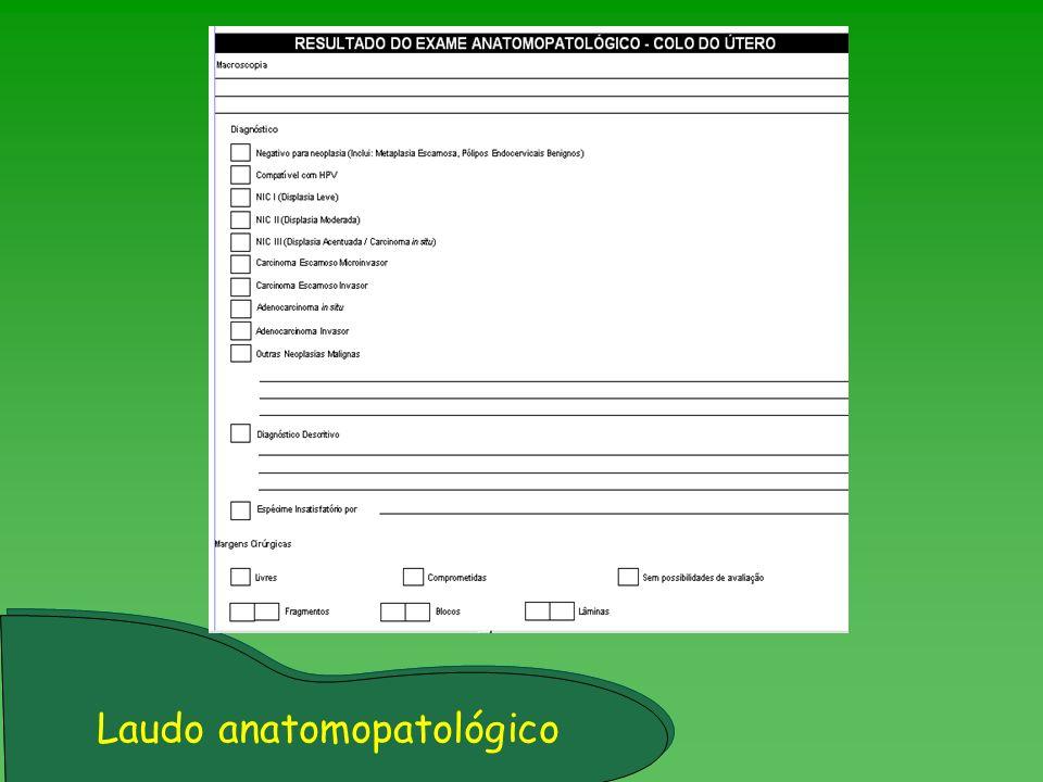 Laudo anatomopatológico