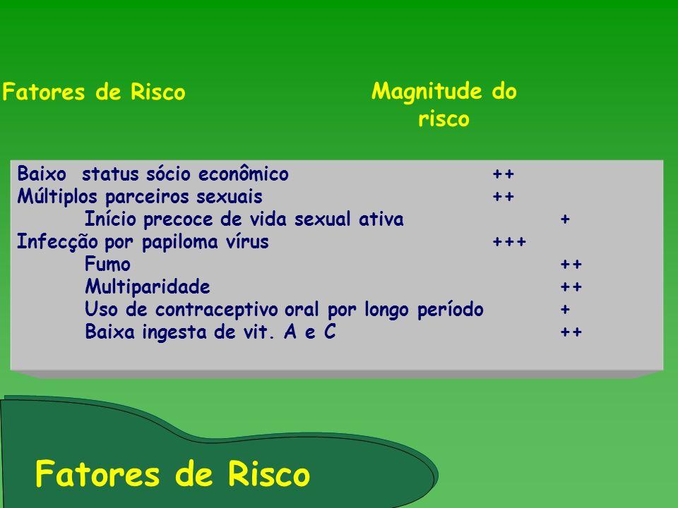 Baixo status sócio econômico++ Múltiplos parceiros sexuais++ Início precoce de vida sexual ativa+ Infecção por papiloma vírus+++ Fumo ++ Multiparidade