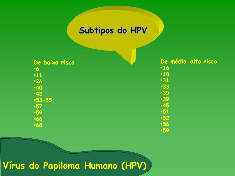 Vírus do Papiloma Humano (HPV) Subtipos do HPV De baixo risco 6 11 26 40 42 53-55 57 59 66 68 De médio-alto risco 16 18 31 33 35 39 45 51 52 56 59