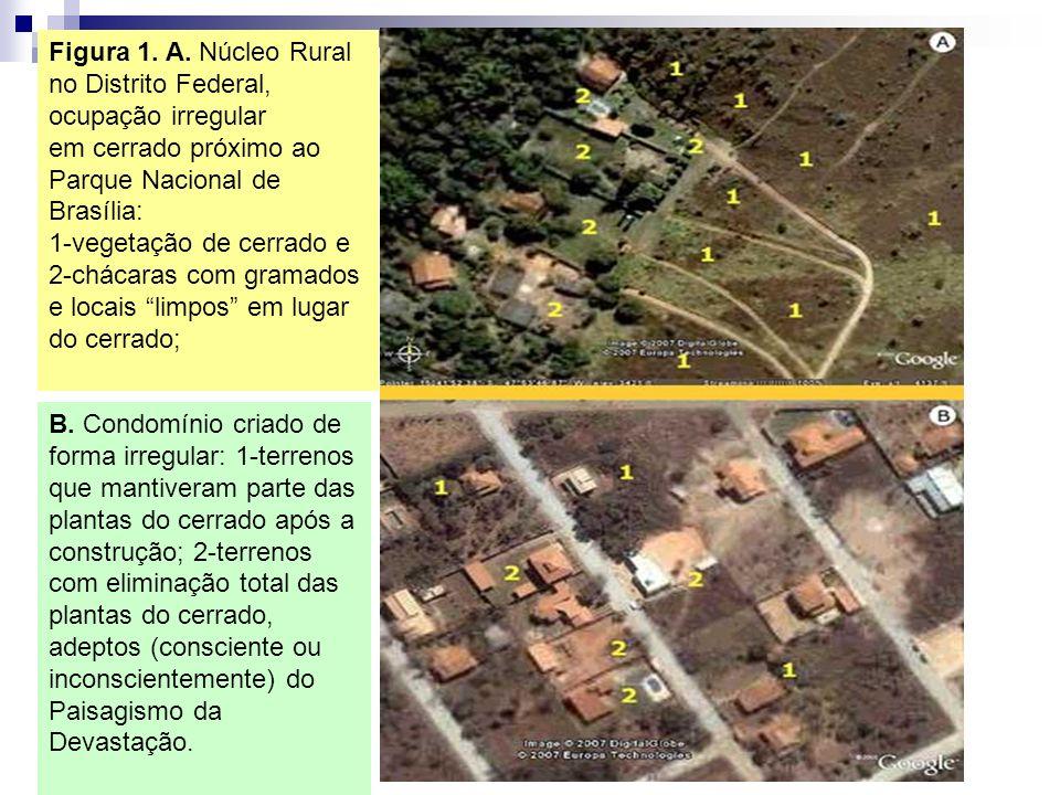 Figura 1. A. Núcleo Rural no Distrito Federal, ocupação irregular em cerrado próximo ao Parque Nacional de Brasília: 1-vegetação de cerrado e 2-chácar