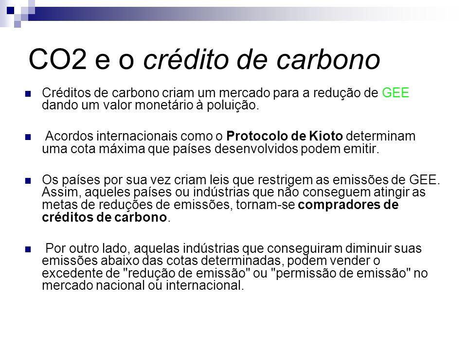 Créditos de carbono criam um mercado para a redução de GEE dando um valor monetário à poluição. Acordos internacionais como o Protocolo de Kioto deter