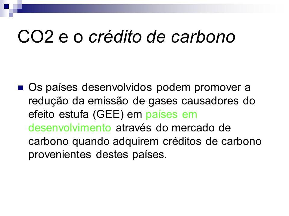 Os países desenvolvidos podem promover a redução da emissão de gases causadores do efeito estufa (GEE) em países em desenvolvimento através do mercado