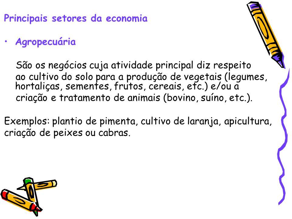 Principais setores da economia Agropecuária São os negócios cuja atividade principal diz respeito ao cultivo do solo para a produção de vegetais (legu