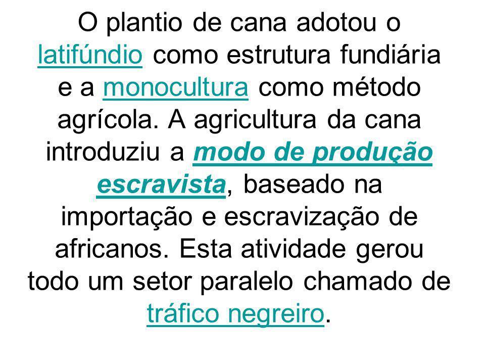 O plantio de cana adotou o latifúndio como estrutura fundiária e a monocultura como método agrícola. A agricultura da cana introduziu a modo de produç