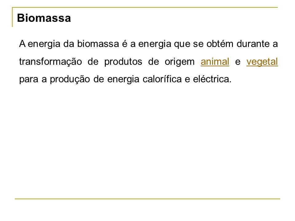 Biomassa A energia da biomassa é a energia que se obtém durante a transformação de produtos de origem animal e vegetal para a produção de energia calorífica e eléctrica.animalvegetal