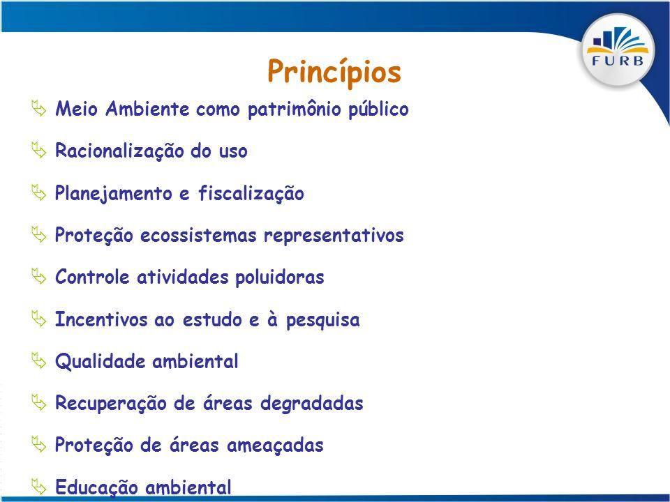 Princípios Meio Ambiente como patrimônio público Racionalização do uso Planejamento e fiscalização Proteção ecossistemas representativos Controle ativ