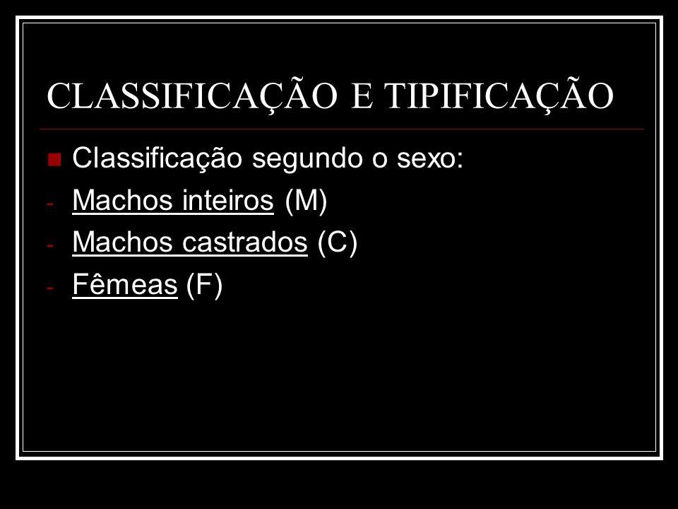 CLASSIFICAÇÃO E TIPIFICAÇÃO Classificação segundo o sexo: - Machos inteiros (M) - Machos castrados (C) - Fêmeas (F)