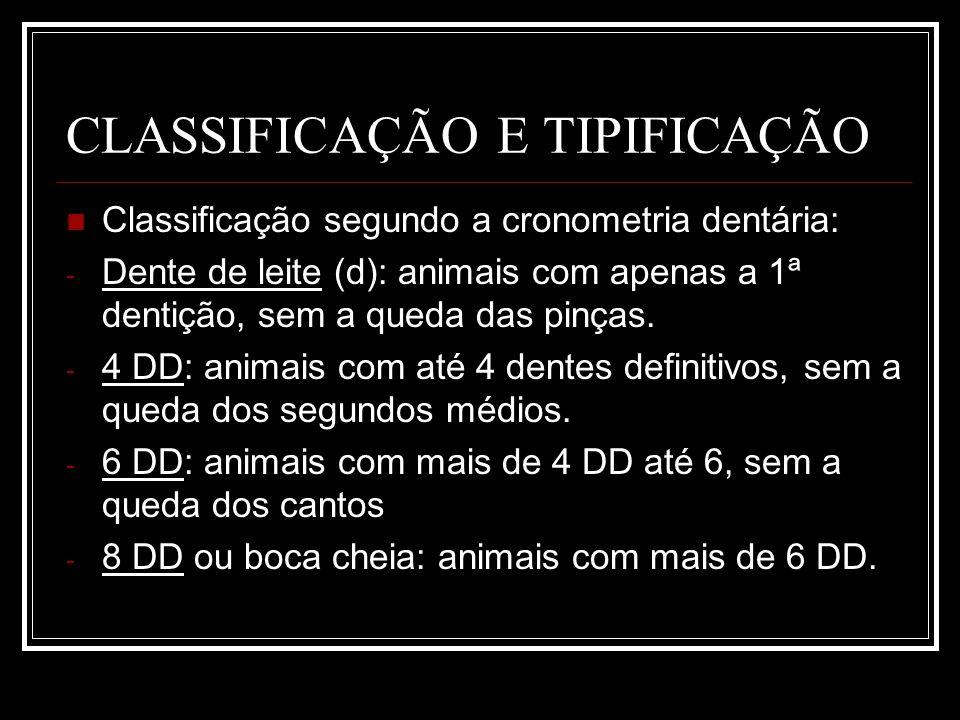 CLASSIFICAÇÃO E TIPIFICAÇÃO Classificação segundo a cronometria dentária: - Dente de leite (d): animais com apenas a 1ª dentição, sem a queda das pinç