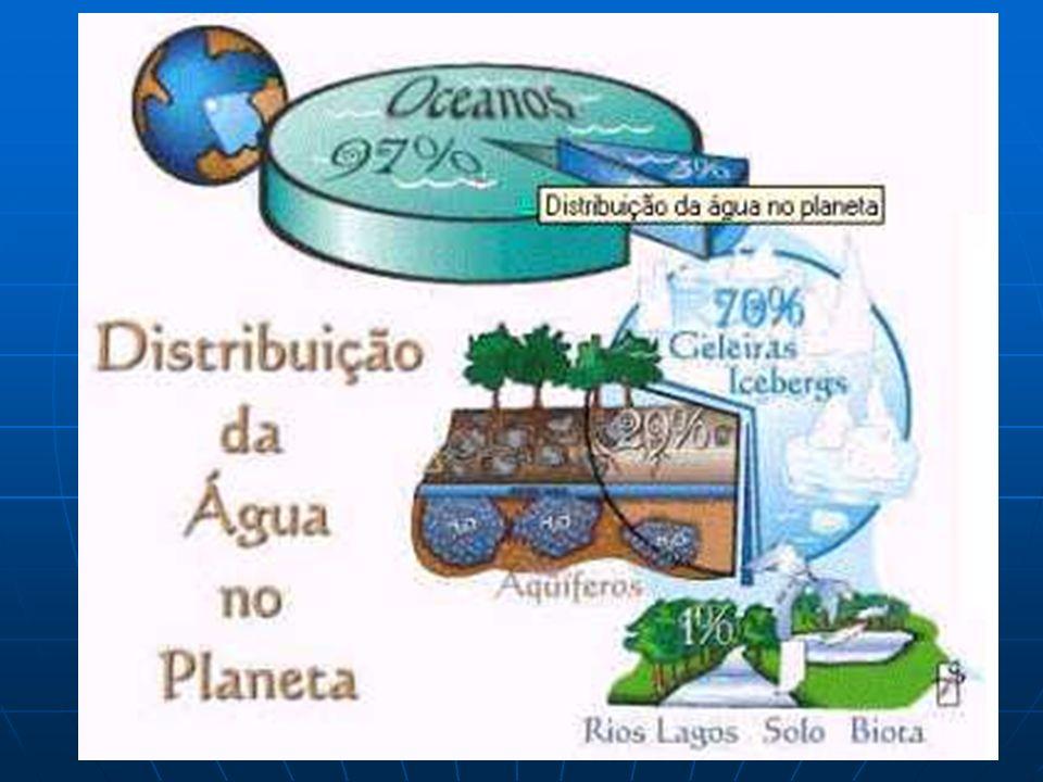 POLUIÇÃO DA ÁGUA DEFINIÇÃO: é qualquer alteração das suas propriedades físicas, químicas ou biológicas, que possa prejudicar a saúde, a segurança e o bem-estar das populações, causar dano à flora e à fauna, ou comprometer o seu uso para fins sociais e econômicos.
