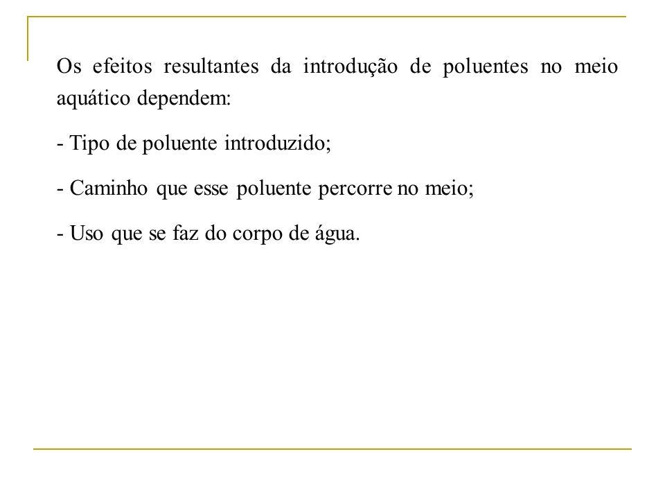 Os efeitos resultantes da introdução de poluentes no meio aquático dependem: - Tipo de poluente introduzido; - Caminho que esse poluente percorre no m