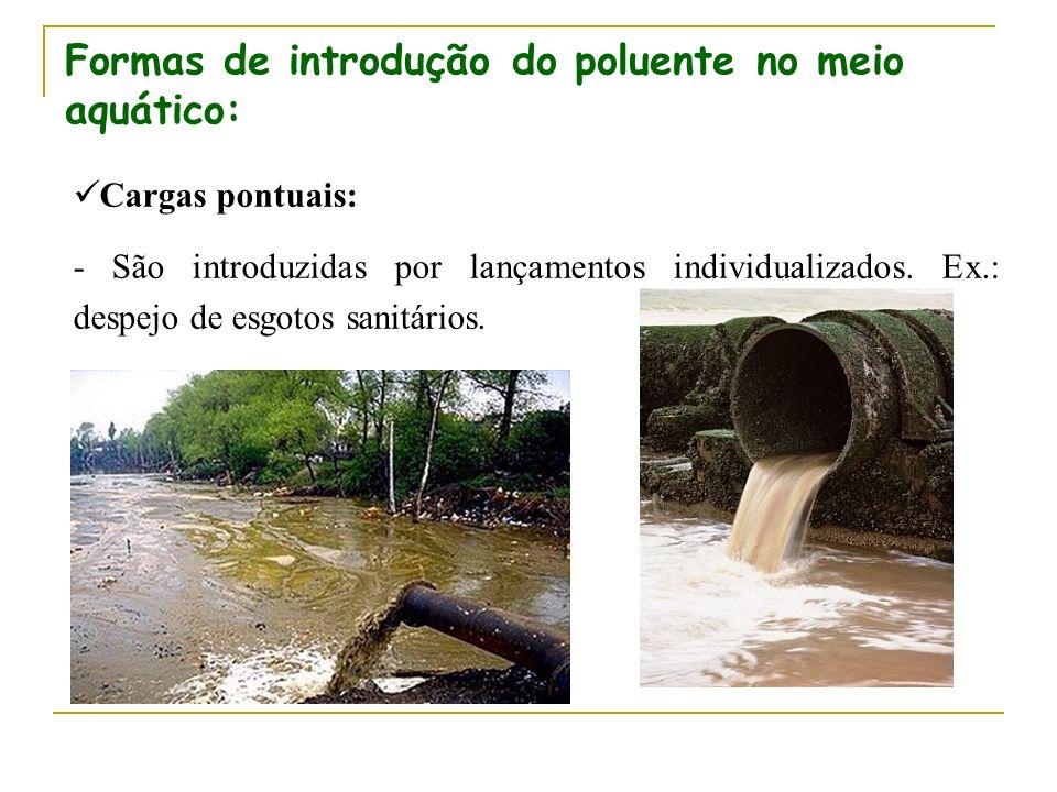 Cargas pontuais: - São introduzidas por lançamentos individualizados. Ex.: despejo de esgotos sanitários. Formas de introdução do poluente no meio aqu