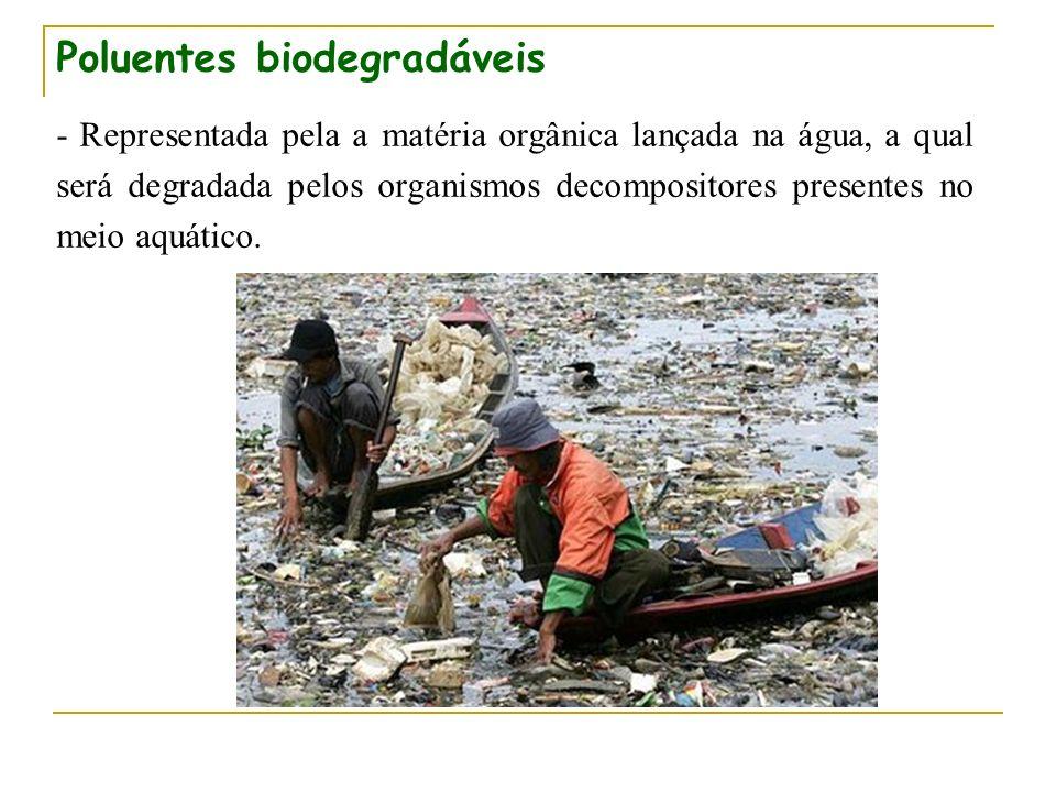 Poluentes biodegradáveis - Representada pela a matéria orgânica lançada na água, a qual será degradada pelos organismos decompositores presentes no me