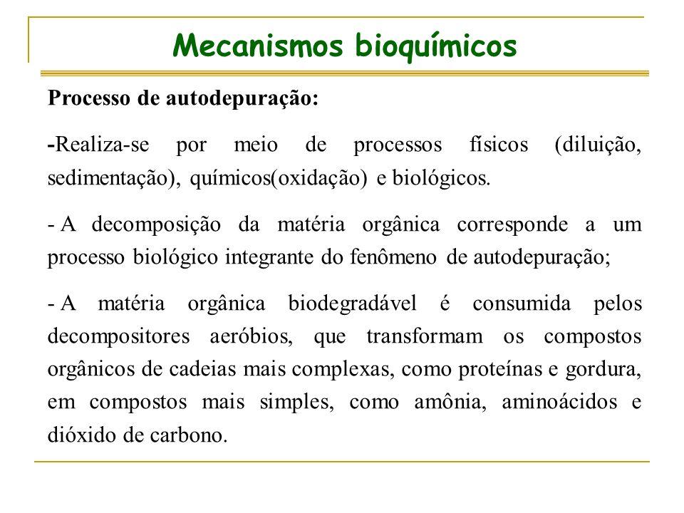 Mecanismos bioquímicos Processo de autodepuração: -Realiza-se por meio de processos físicos (diluição, sedimentação), químicos(oxidação) e biológicos.