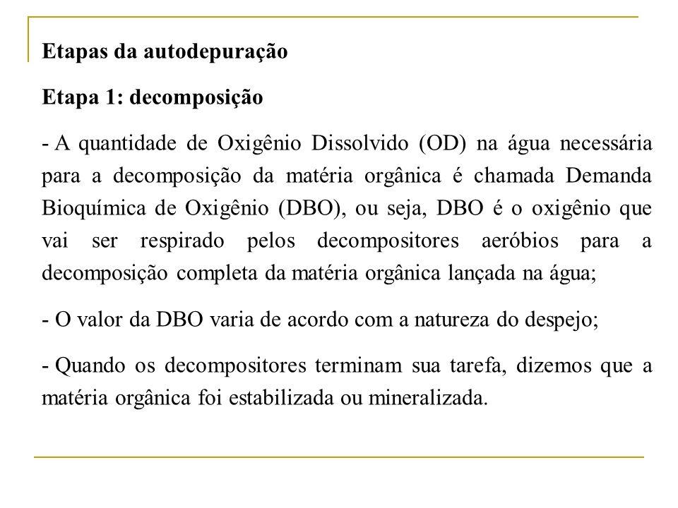Etapas da autodepuração Etapa 1: decomposição - A quantidade de Oxigênio Dissolvido (OD) na água necessária para a decomposição da matéria orgânica é