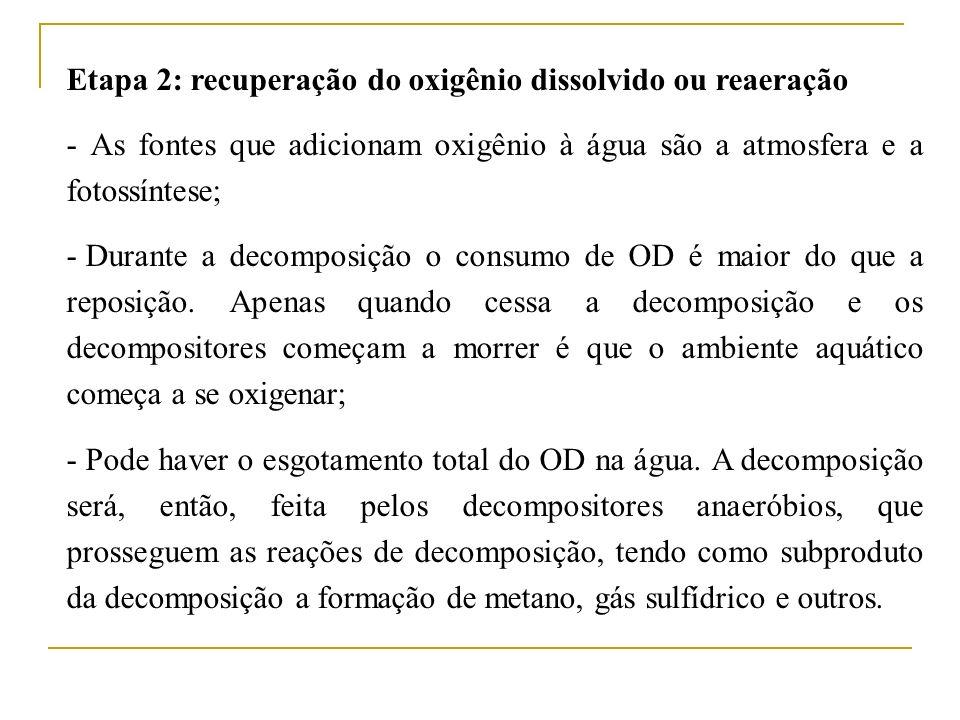Etapa 2: recuperação do oxigênio dissolvido ou reaeração - As fontes que adicionam oxigênio à água são a atmosfera e a fotossíntese; - Durante a decom
