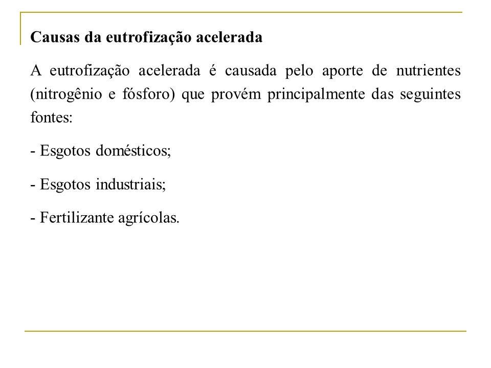 Causas da eutrofização acelerada A eutrofização acelerada é causada pelo aporte de nutrientes (nitrogênio e fósforo) que provém principalmente das seg