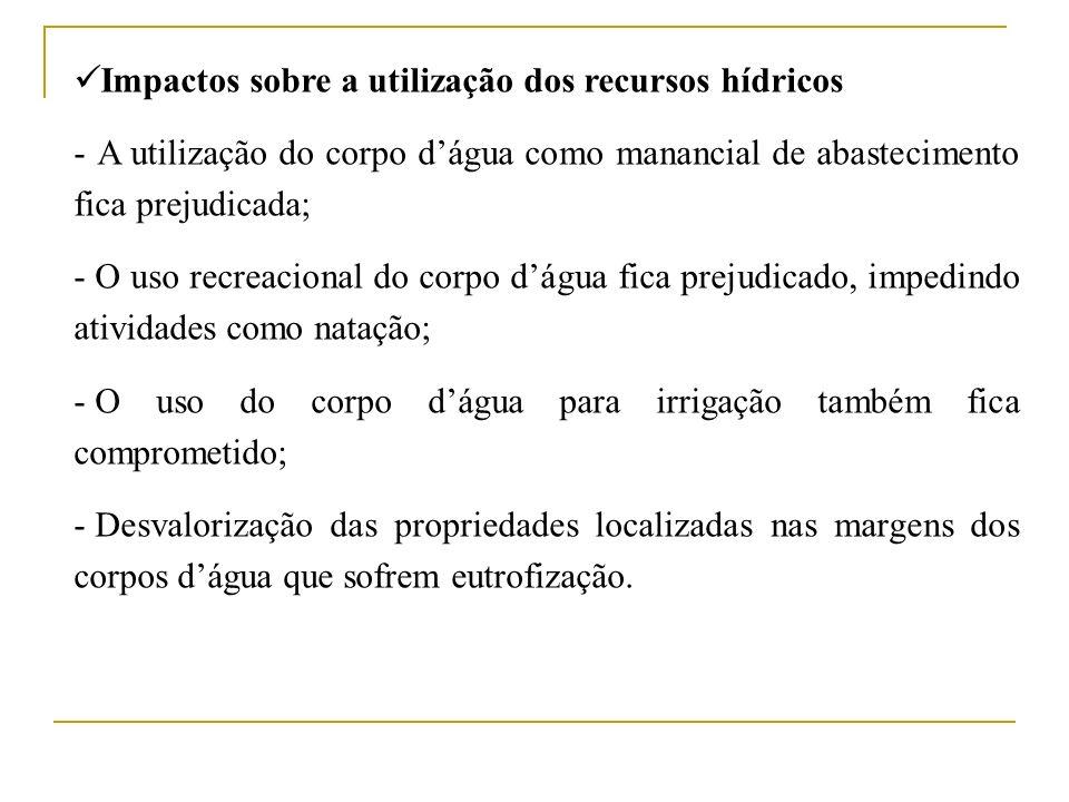 Impactos sobre a utilização dos recursos hídricos - A utilização do corpo dágua como manancial de abastecimento fica prejudicada; - O uso recreacional
