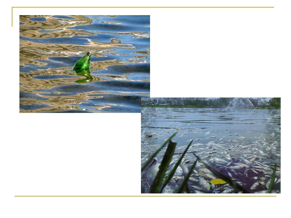 Contaminação: Refere-se à transmissão de substâncias ou microorganismos nocivos à saúde pela água.