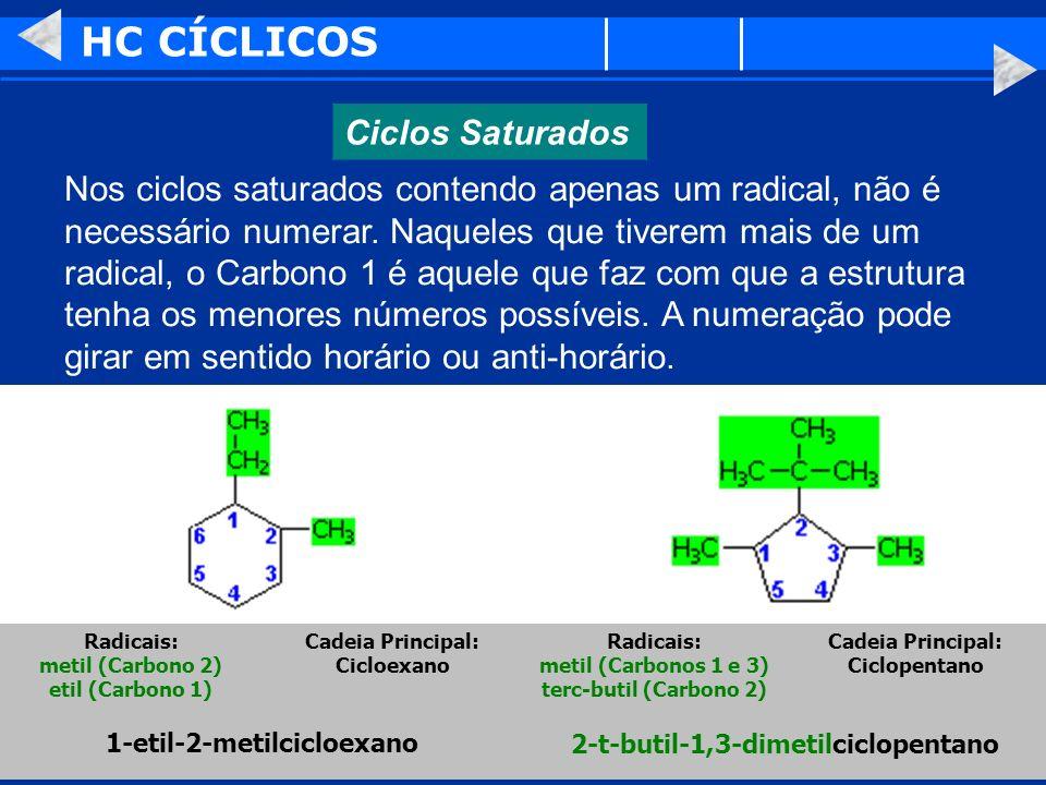 HC CÍCLICOS Ciclos Saturados Nos ciclos saturados contendo apenas um radical, não é necessário numerar. Naqueles que tiverem mais de um radical, o Car