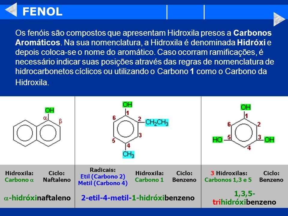 FENOL Os fenóis são compostos que apresentam Hidroxila presos a Carbonos Aromáticos. Na sua nomenclatura, a Hidroxila é denominada Hidróxi e depois co