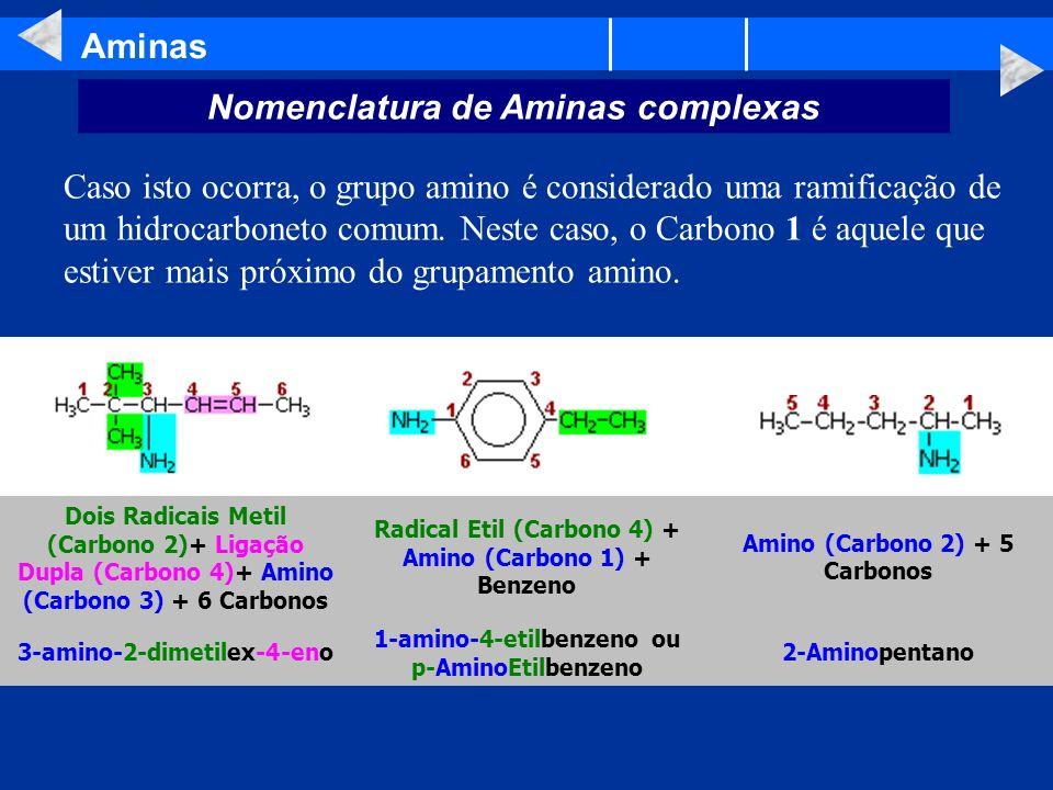 Aminas Nomenclatura de Aminas complexas Caso isto ocorra, o grupo amino é considerado uma ramificação de um hidrocarboneto comum. Neste caso, o Carbon