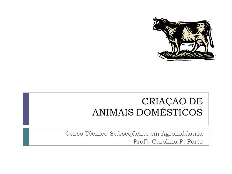 CRIAÇÃO DE ANIMAIS DOMÉSTICOS Curso Técnico Subseqüente em Agroindústria Profª. Carolina P. Porto