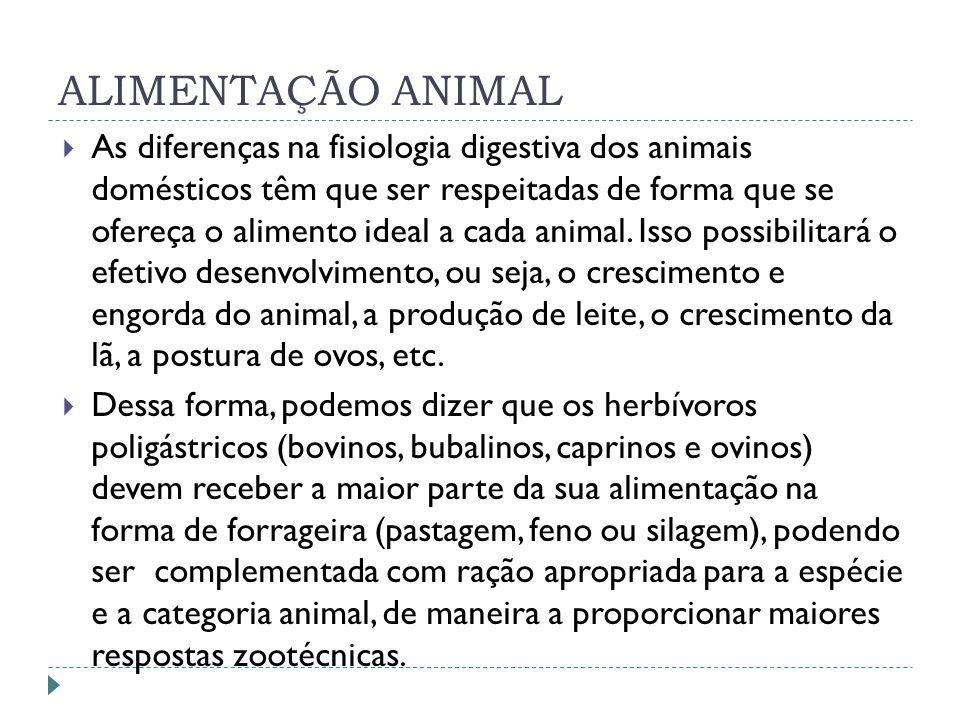ALIMENTAÇÃO ANIMAL As diferenças na fisiologia digestiva dos animais domésticos têm que ser respeitadas de forma que se ofereça o alimento ideal a cad