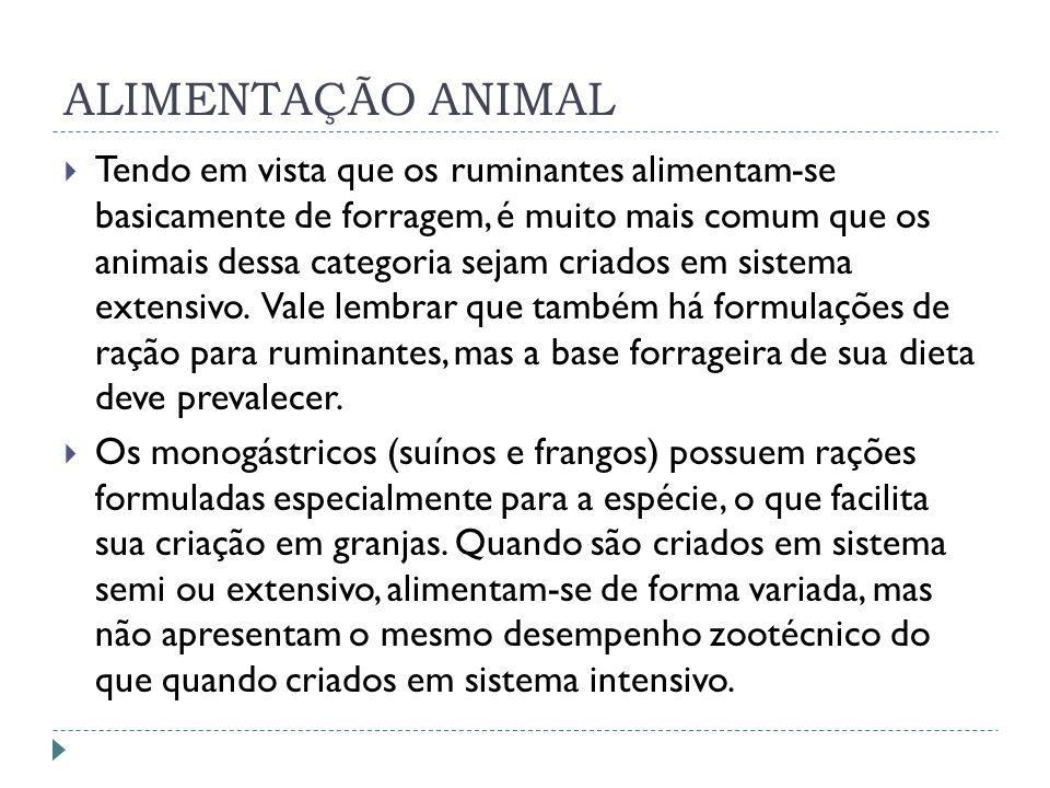 ALIMENTAÇÃO ANIMAL Tendo em vista que os ruminantes alimentam-se basicamente de forragem, é muito mais comum que os animais dessa categoria sejam cria