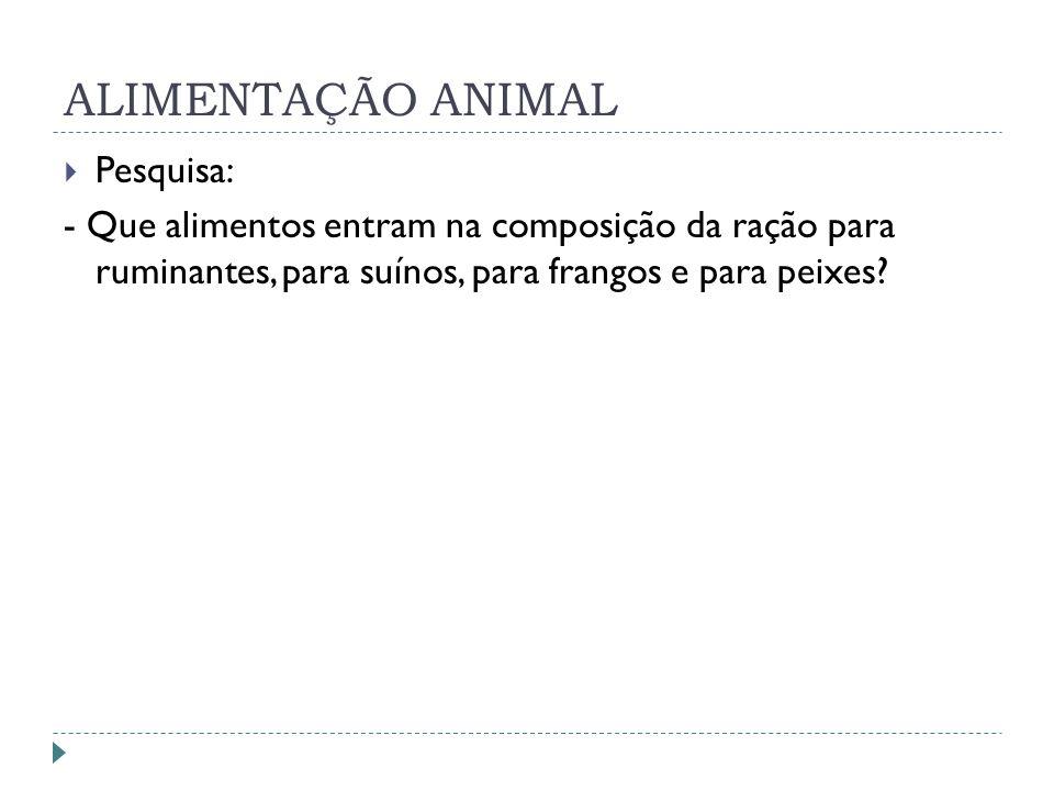 ALIMENTAÇÃO ANIMAL Pesquisa: - Que alimentos entram na composição da ração para ruminantes, para suínos, para frangos e para peixes?
