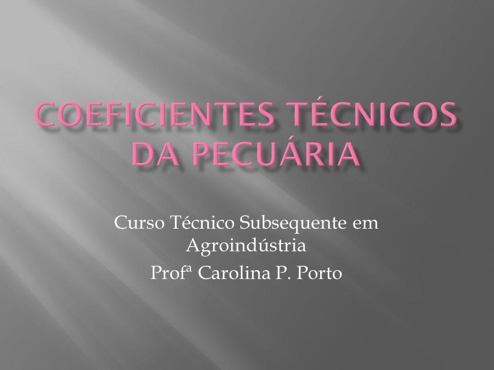 Curso Técnico Subsequente em Agroindústria Profª Carolina P. Porto