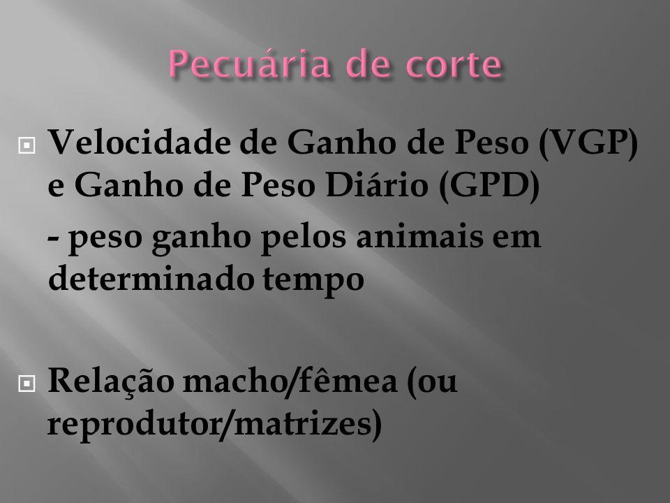 Velocidade de Ganho de Peso (VGP) e Ganho de Peso Diário (GPD) - peso ganho pelos animais em determinado tempo Relação macho/fêmea (ou reprodutor/matrizes)