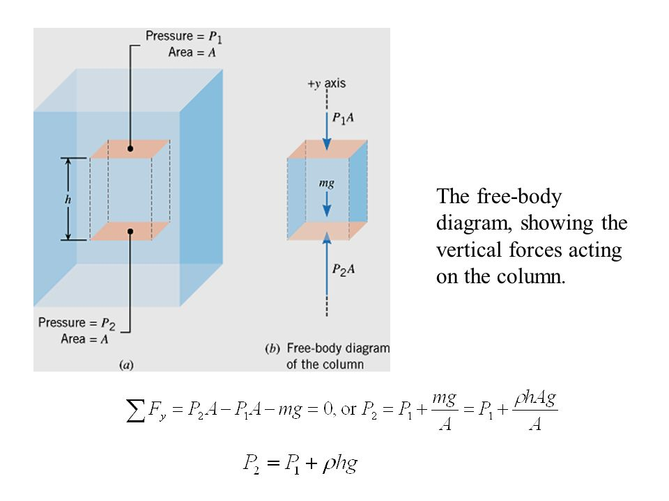 The free-body diagram, showing the vertical forces acting on the column.