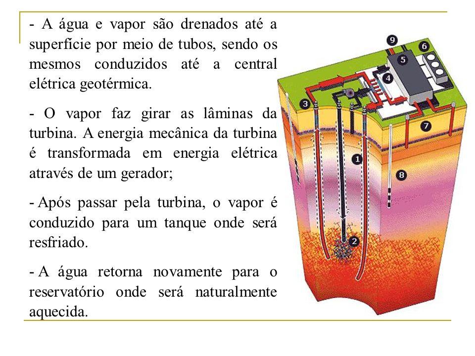 - A água e vapor são drenados até a superfície por meio de tubos, sendo os mesmos conduzidos até a central elétrica geotérmica.
