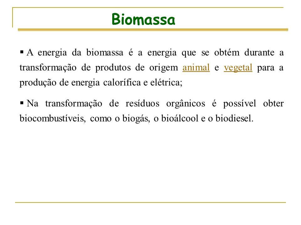 Biomassa A energia da biomassa é a energia que se obtém durante a transformação de produtos de origem animal e vegetal para a produção de energia calorífica e elétrica;animalvegetal Na transformação de resíduos orgânicos é possível obter biocombustíveis, como o biogás, o bioálcool e o biodiesel.