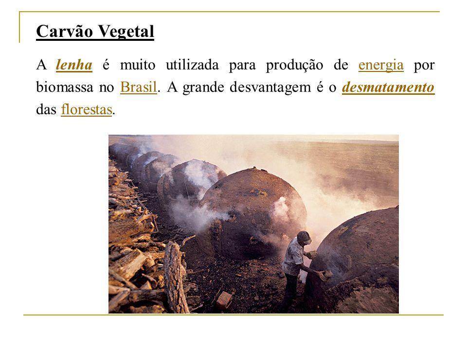 A lenha é muito utilizada para produção de energia por biomassa no Brasil.