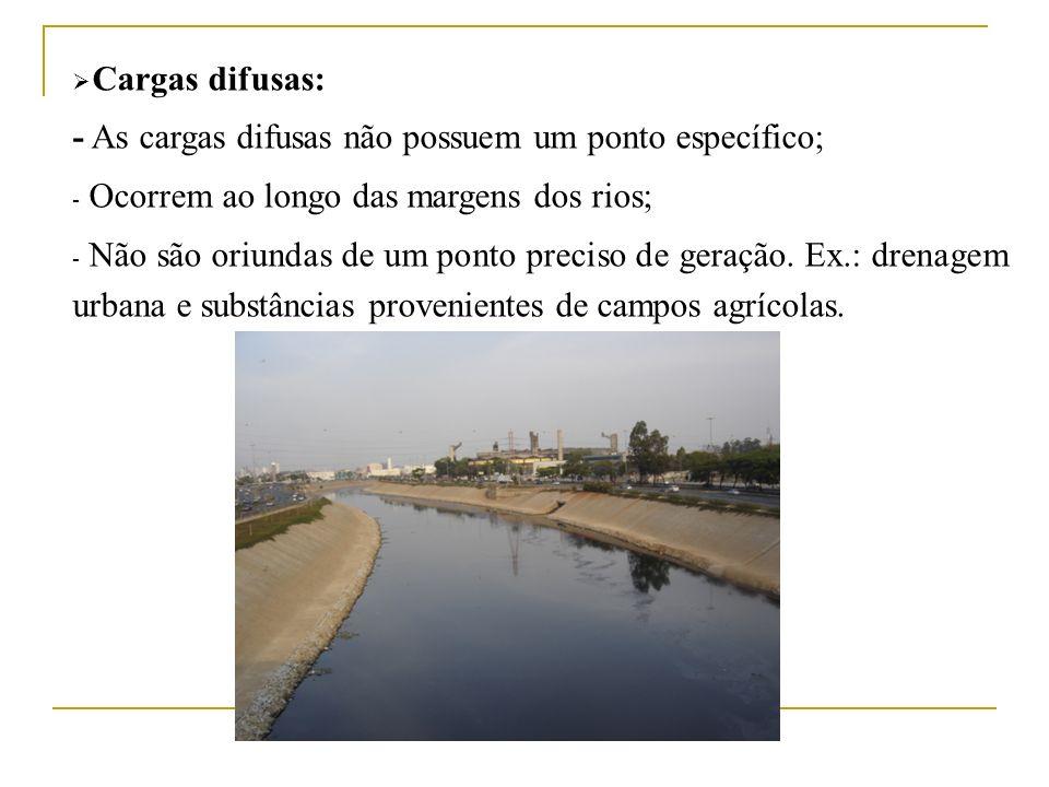Cargas difusas: - As cargas difusas não possuem um ponto específico; - Ocorrem ao longo das margens dos rios; - Não são oriundas de um ponto preciso d
