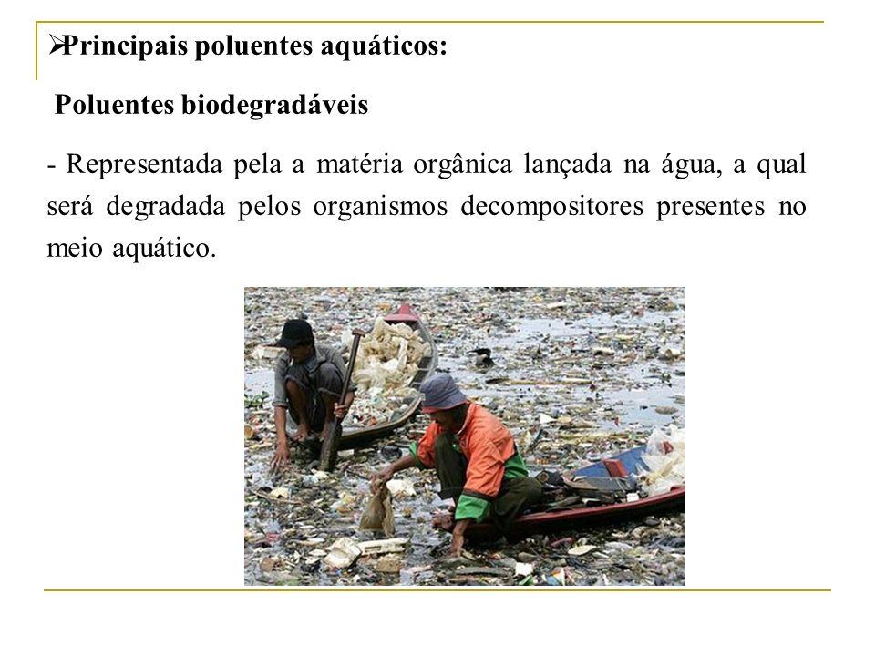 Principais poluentes aquáticos: Poluentes biodegradáveis - Representada pela a matéria orgânica lançada na água, a qual será degradada pelos organismo